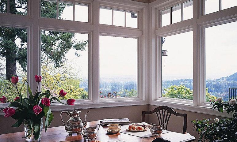Types of windows used in buildings